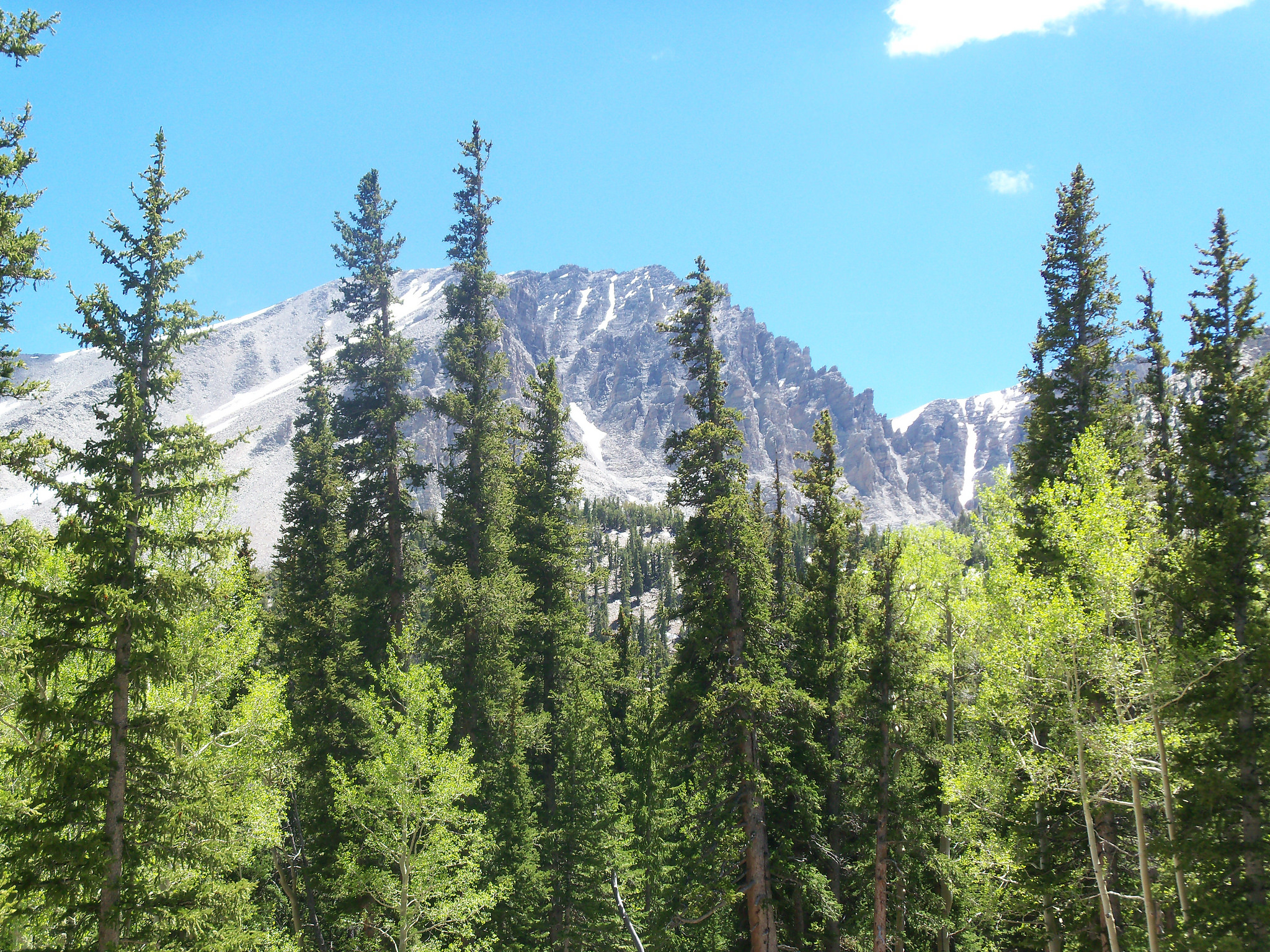 great-basin-park-image